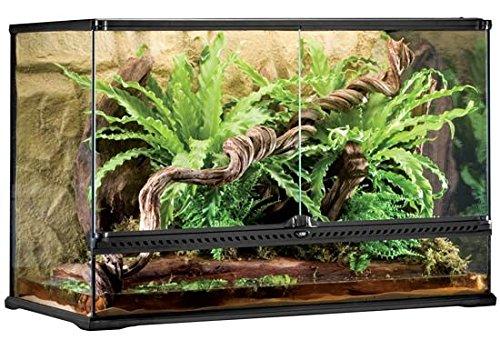 Exo Terra Glass Terrarium, 36 by 18 by 24-Inch