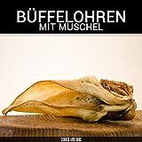 Büffelohren mit Muschel - 200Stk. - von George & Bobs