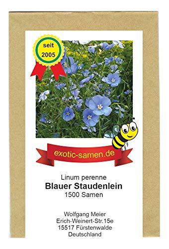 Blauer Staudenlein - Linum perenne - ausdauernd - Wildblume - Bienenweide - 1500 Samen