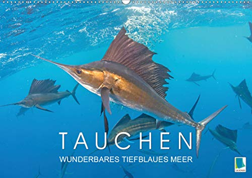 Tauchen: Wunderbares tiefblaues Meer (Wandkalender 2020 DIN A2 quer)