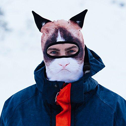 Beardo ® Original Sturmhaube Sturmhauben HD (verschiedene Designs) | Skimaske, Kälteschutz, Gesichtsschutz, Sturmmaske (Böse Katze)