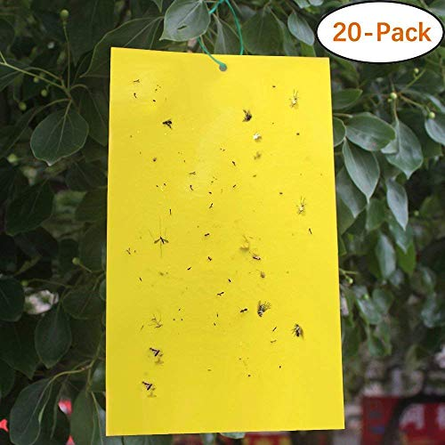 Faicuk 20Pack DualSided Yellow Sticky Traps for Flying Plant Insect Like Fungus Gnats Aphids Whiteflies Leafminers  6x8 Inches Twist Ties Included