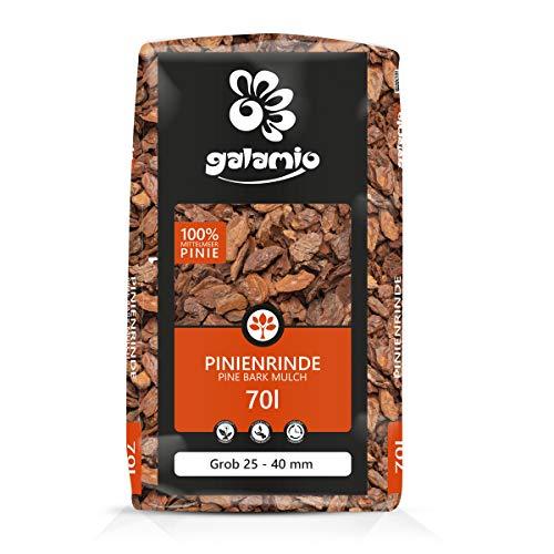 PALIGO Pinienrinde Pinienmulch Rindenmulch Pinie Mulch Garten Dekor Pinus Pinea Natur Mittelmeer Kiefer Grob 25-40mm 70l Sack / 1 Karton Galamio
