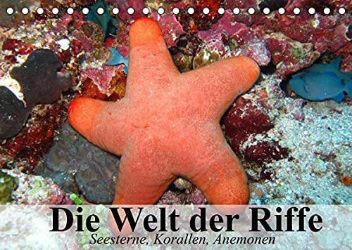 Die Welt der Riffe. Seesterne, Korallen, Anemonen (Tischkalender 2022 DIN A5 quer)