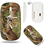 Liili Wireless Mouse White Base Travel 2.4G Wireless Mice with USB Receiver, Click with 1000 DPI for Notebook, pc, Laptop, Computer, mac Book A Pair of White Tailed Deer Bucks Sparring Image