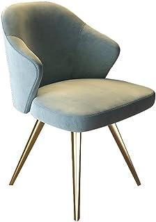 BTTNW Sillas De Cocina 2 sillas luz Silla de Comedor Tea Shop Cafetería Acero Inoxidable heces Moderna Minimalista Sillas De Comedor (Color : Azul, Size : 52cm x 52cm x 82cm)