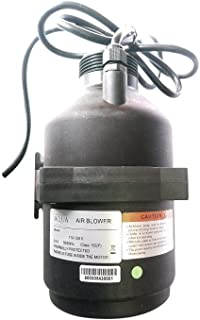Evolution Aqua Micro Bead Filter Replacement Air Blower, 300 Watt