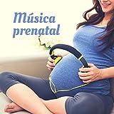 Musica prenatal – Piano con sonidos de la naturaleza para