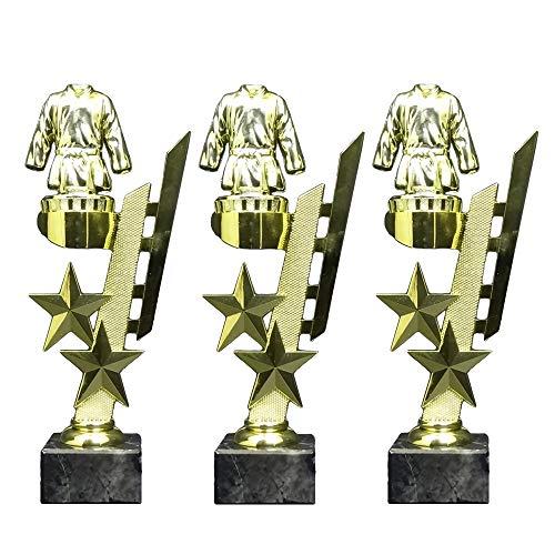 RaRu 3 Karate/Judo-Pokale (Sternenhalter) mit Ihrer Wunschgravur