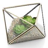 Forma de diamante cristal Prism terrario con latón borde/Air Plant pantalla funda/soporte para vela de té