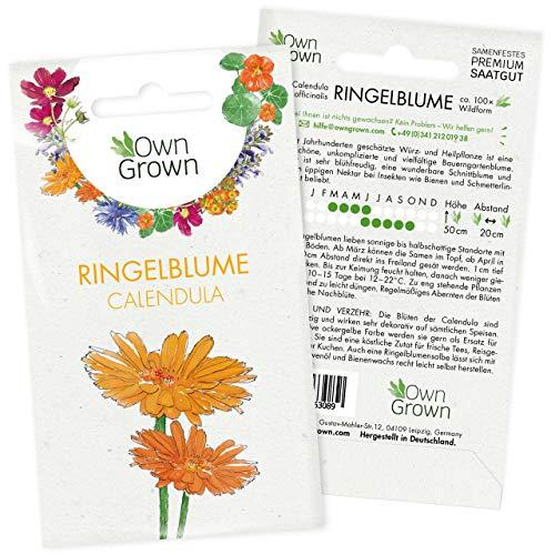 Wilde Ringelblumen Samen: Premium Ringelblume Samen für ca. 100x blühende Ringelblumen Pflanze – Calendula Samen für Essbare Blüten – Blumen Saatgut – Flower Seeds – Heilkräuter Samen von OwnGrown