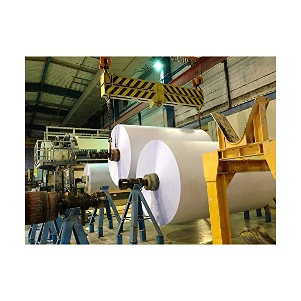 Clairefontaine Trophée - Resma de papel, 250 hojas, A4, 21 x 29.7 cm, color naranja : Papeles coloridos para la correspondencia Conveniente para todas las impresoras de inyección de tinta y láser Formato DIN A4