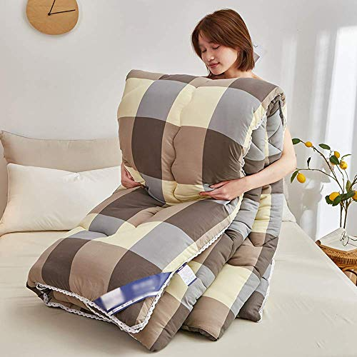 Duvet Autumn and winter quilt Washed cotton winter quilt spring and autumn quilt thickened warm quilt,thickened warm gift quilt for home bedroom(C,200 * 230cm4kg)