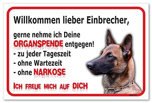 AdriLeo Schild - Vorsicht Malinois - Willkommen Lieber Einbrecher - (20x30cm) / Achtung Hund Wachhund