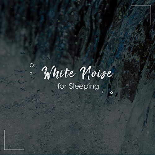 Rain Sounds & White Noise Meditation