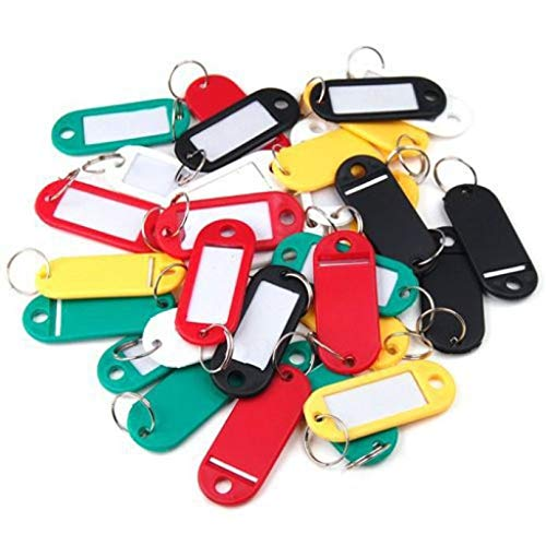PIKAqiu33 50Pieces Plastic Key Tags Assorted Key Rings ID Tags Name Card Label, Kitchen,Dining & Bar, for Xmas Day and New Year (Multicolor)