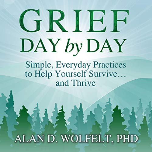 Page de couverture de Grief Day by Day