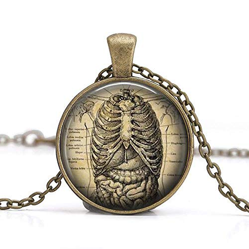 Anatomical Ribcage Necklace,Human Anatomy Pendant, Ribcage Necklace,Medical Student Gift