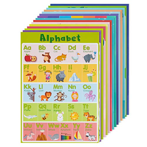 15 Large Educational Posters for Kids and Toddlers with 75 Glue...