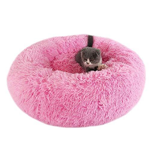 HIMA PETTR Quattro Stagioni Pet Nido met nachtkastje Warm Resto Carino hoge kwaliteit voor kleine dieren