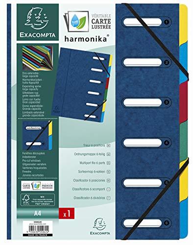 Exacompta 55062E - Clasificador harmonika con ventanas con gomas, 6 compartimentos, azul