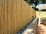 DE-COmmerce Hochwertiger Garten Zaun Sichtschutz Bambus ATY NATURE I Garten, Terrasse, Balkon Sichtschutz Bambus mit geschlossenen Rohren I Windschutz Bambus 200 cm x 500 cm