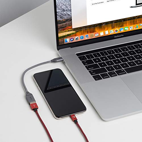 RAMPOW USB 3.0 auf USB C Adapter [2 Stück] – OTG unterstützter Typ C Adapter – USB-C Stecker auf USB-A Buchse Konverter für MacBook Pro/Air, Samsung Galaxy S20/Note 20 – Space Gray