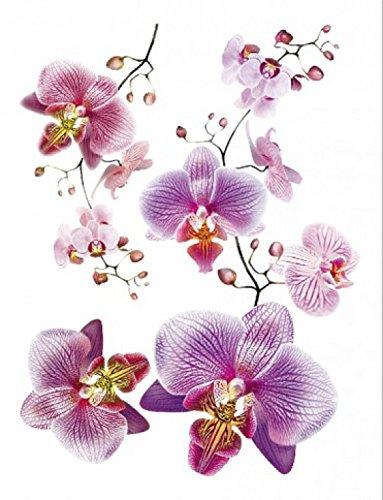 1art1 Blumen - Rosa Orchideen Wand-Tattoo | Deko Wandaufkleber für Wohnzimmer Kinderzimmer Küche Bad Flur | Wandsticker für Tür Wand Möbel/Schrank 85 x 65 cm