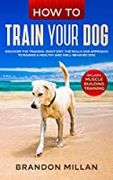 How to Train your Dog: Discover the Training, Right Diet, the Skills and Approach to Raising a Healthy and Well-Behaved Dog. (Includes: Muscle Building Training)