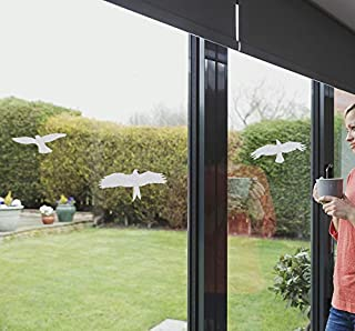 Anti-Collision Window Alert Bird Stickers Silhouettes Glass Door Protection and Save Birds (9 Silhouettes, Transparent)