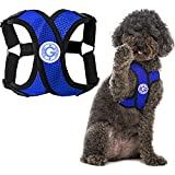 Gooby Comfort X Step in Harness - Blue, Medium - No Pull Small Dog Harness Patented Choke-Free X...