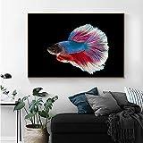 KWzEQ Cartel Moderno de Arte de Peces y Lienzo Mural sobre Peces de Colores, decoración del hogar,Pintura sin Marco,75x112cm
