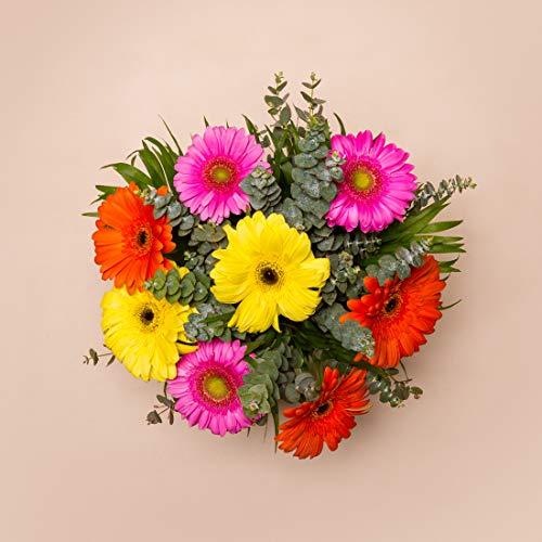 Ramos de flores naturales a domicilio variado California - Flores frescas - Envío a domicilio 24h GRATIS - Tarjeta dedicatoria incluida - Caja especial para ramos de flores naturales.