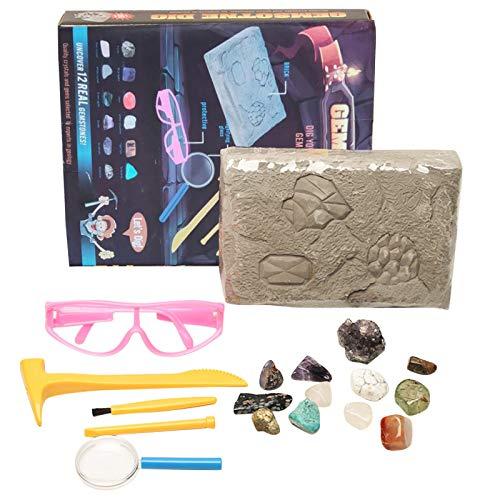 XIMIN TIREOW Wissenschafts Kits & Spielzeug, Kinder Entdeckungsbox, Kreative DIY Graben Kristall Piraten Schatz Archäologie Kinderspielzeug Lernspielzeug für Kinder Jungen Mädchen (B)