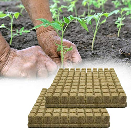 N\C 25/50 / 100PCs Rockwool Sheet Steinwolle Block Propagation Cloning Seed Raising Soilless Cultivation Hydroponic 25x25x40mm