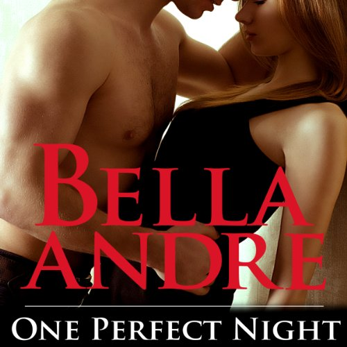 One Perfect Night audiobook cover art