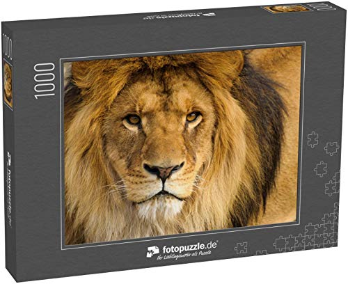 Puzzle 1000 Teile Schöner mächtiger Löwe - Klassische Puzzle, 1000/200/2000 Teile, in edler Motiv-Schachtel, Fotopuzzle-Kollektion 'Tiere'