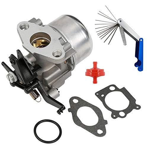Jyeee Carburetor Carb for Briggs & Stratton 796608 Select 111000 11P000 121000 12Q000