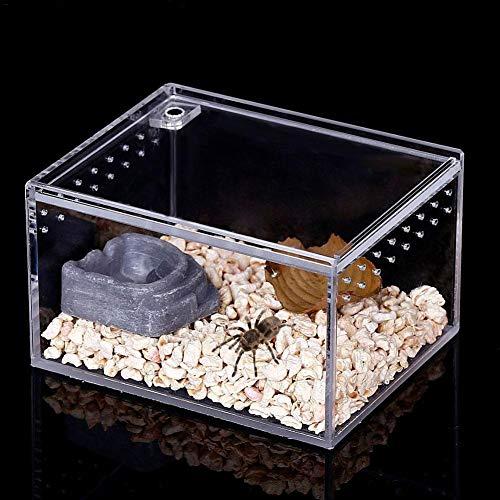 Reptilienzuchtbox,Terrarium Transportbox,Fütterungsbox Aus Acryl,Reptilien-Zuchtbox Transparent Belüftet,Transparente Reptilienzuchtbox,Mit Schiebedeckel,für Insektenreptilien Vogelspinnen Amphibien