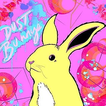 Dust Bunnys