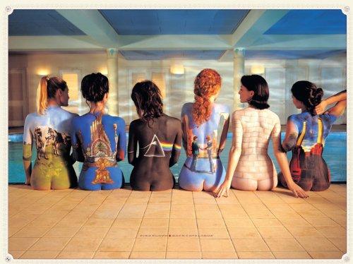Pink Floyd WDC90002 - Panel de lienzo, 60 x 80 cm, 'Catalogu