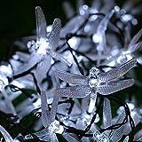 2,5 M Licht 20 Led Lichterketten Einstelllichterkette Batteriebetriebene Libelle Leds Wasserdichte Beleuchtung Garden Kupfer Drahtlichterkette Weihnachten Lichter Flasche Warmweiß