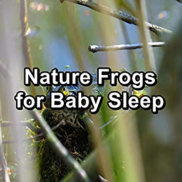 Nature Frogs for Baby Sleep