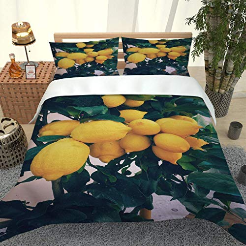 AOJHG Duvet Cover Single Bed, 135X200Cm Microfiber Durable Fade Resistant Fabric - Yellow Lemon Fruit Quilt Cover 2 Pillowcases-Soft Hypoallergenic,With Zipper, 3D Printed Quilt Cover