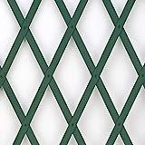 Treplas 1,00x3 m, Verde, Traliccio Estensibile in PVC per Sostegno a Muro di Fiori e Piant...