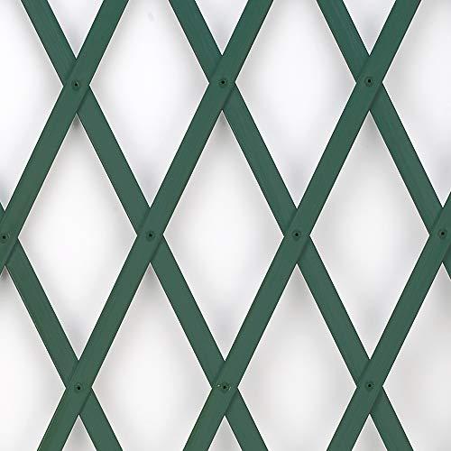 Trepls Treillage extensible en PVC 0,50x2 m vert