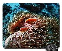 魚と海のサンゴマウスパッド、マウスパッド(オーシャンズマウスパッド)