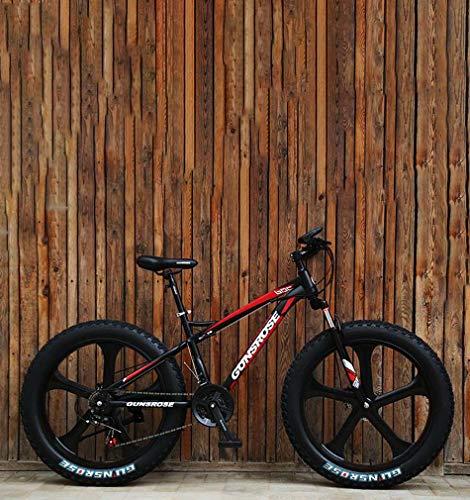avis fat bike professionnel VTT adulte avec pneus épais AISHFP, freins à double disque / vélo à cadre en acier à haute teneur en carbone…