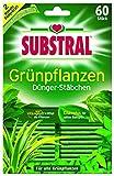 Substral Bâtons d'engrais pour Plantes Vertes Pack de 60