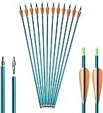SHARROW 12 Freccia in Alluminio 32' Frecce di Caccia Spine 500 Freccia di Tiro al Bersaglio con Piuma di Plastica per Bersaglio Tiro con L'Arco Arco Ricurvo Arco Compound Arco Lungo (Blu)